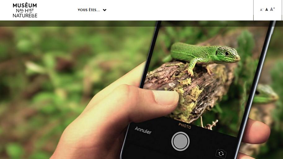 L'application INPN Espèces fait de vous un explorateur observateur de la biodiversité